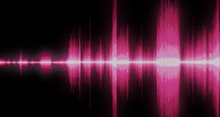 sound waves raspberry tips